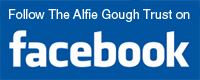 Follow Appeal4Alfie on Facebook